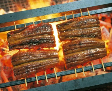 炭火焼き 鰻の蒲焼き