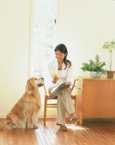 椅子に座る女性と犬