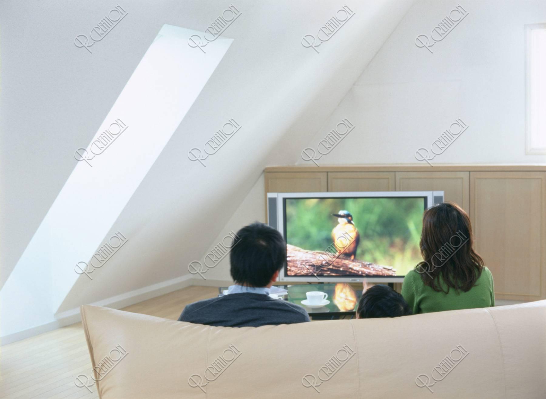 プラズマテレビを見るファミリー