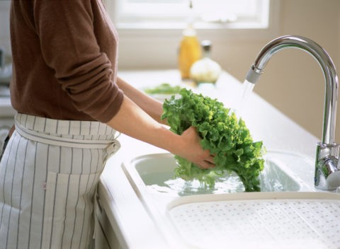 グリーンリーフを洗う手