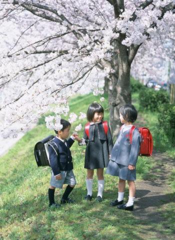 桜の花と3人の新入生