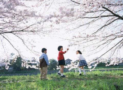 桜の花と3人の小学生