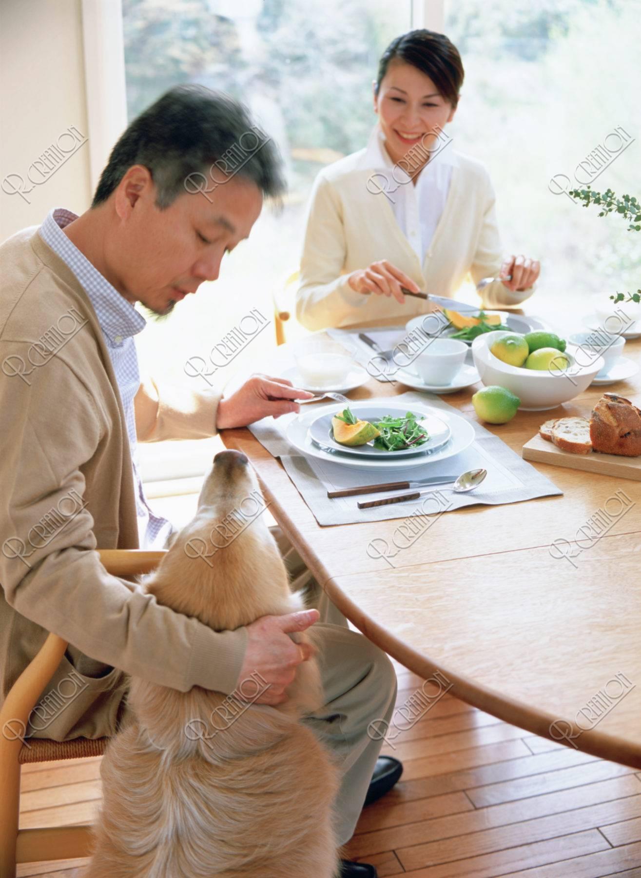 食事中の熟年夫婦と犬