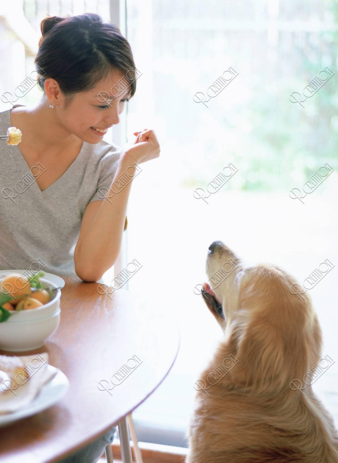 ティタイムの女性と犬