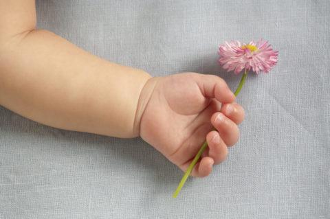 花を持つ赤ちゃんの手