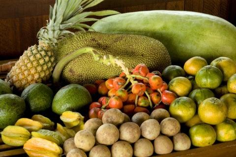 アマゾンのフルーツ
