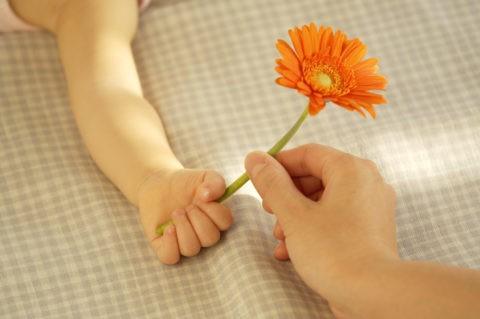 花を持つ母親と赤ちゃんの手