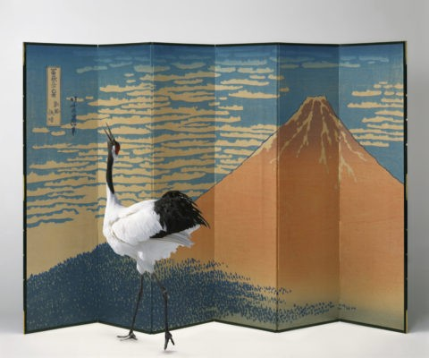 タンチョウヅル ツル 屏風 富士山 正月 合成