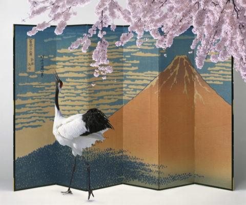 桜 タンチョウヅル ツル 屏風 富士山 合成
