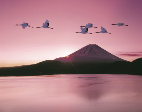 富士山 本栖湖 タンチョウヅル ツル 朝焼け 正月 合成