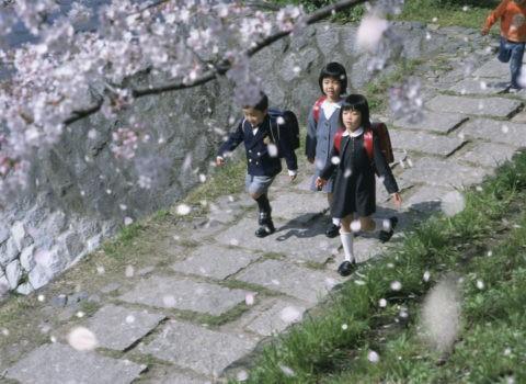 桜 子供 桜吹雪 合成 散る 春 入学 ランドセル