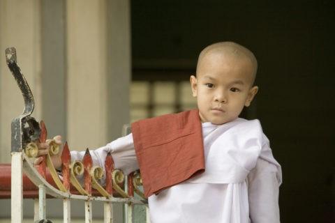 少年僧 修行僧 僧侶 少年 マハーガンダーヨン僧院