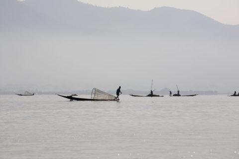 インレー湖 漁業 漁法