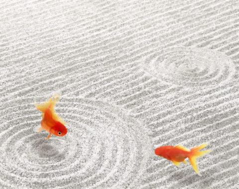 金魚 砂 合成 夏イメージ 和風