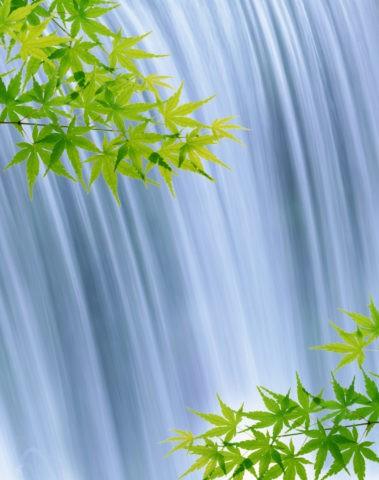 滝 流れ 青楓 新緑 合成