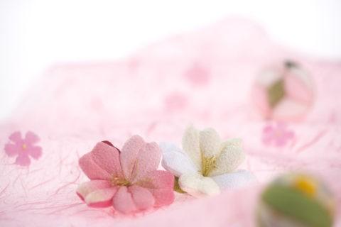 和風 春 ピンク ちりめん細工 桜