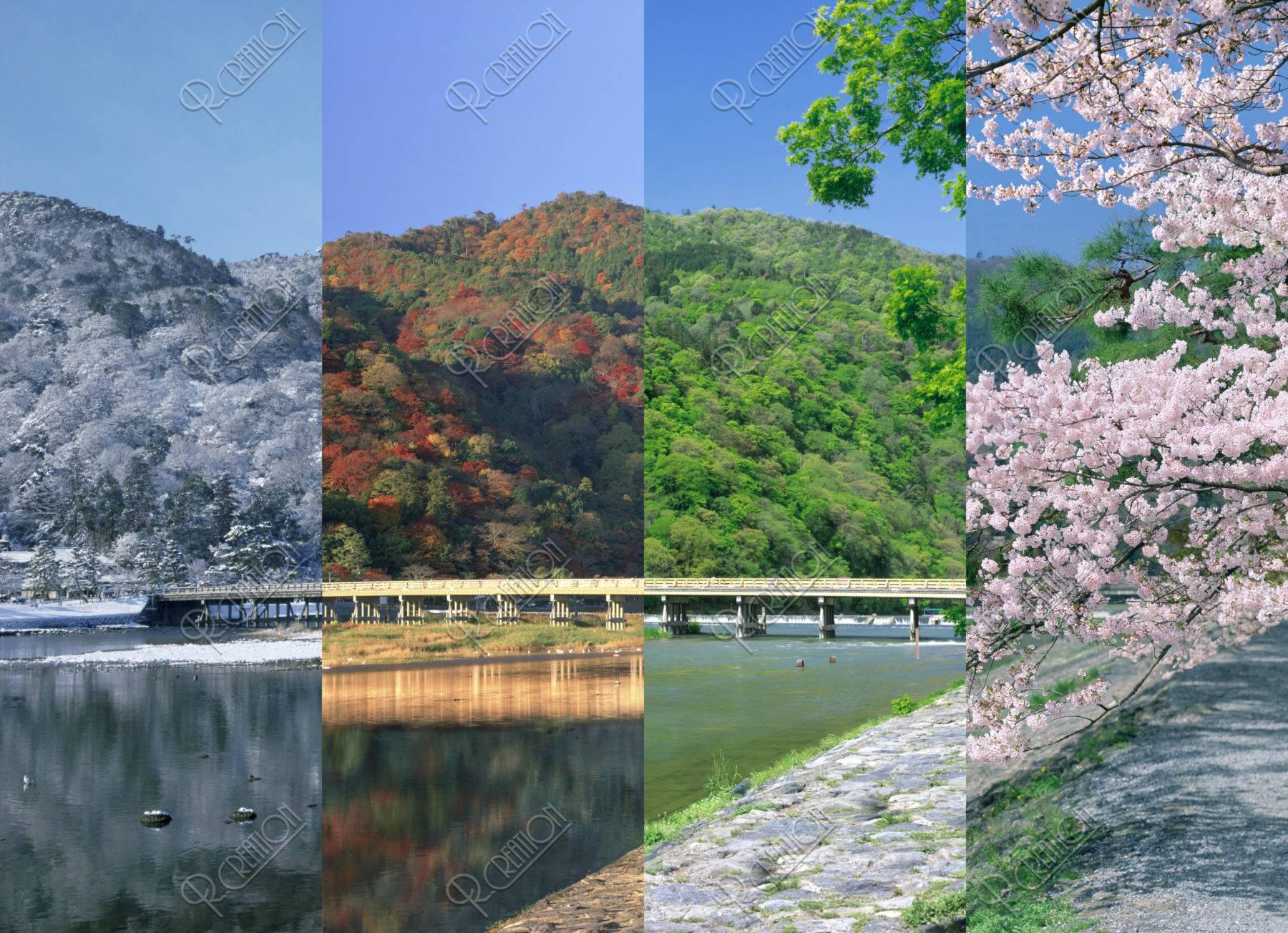 嵐山 渡月橋 春夏秋冬 合成 | ストックフォト | アールクリエーション