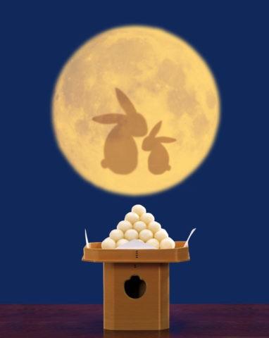 月見 満月 ウサギ CG