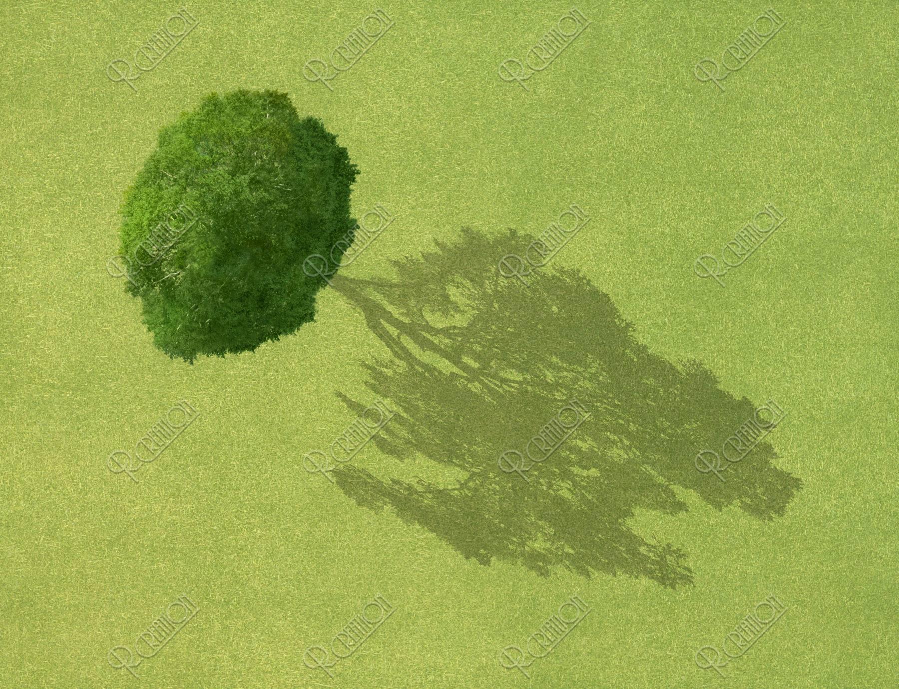草原 木の陰(創作)