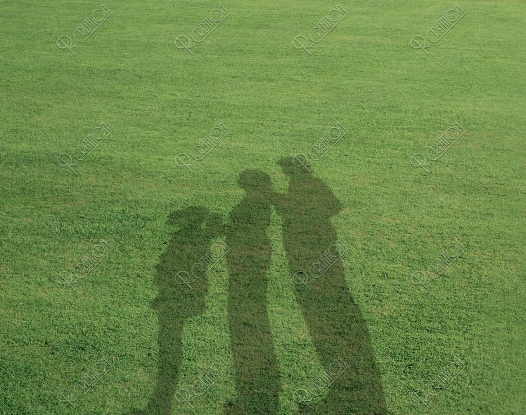 芝生 影 合成写真