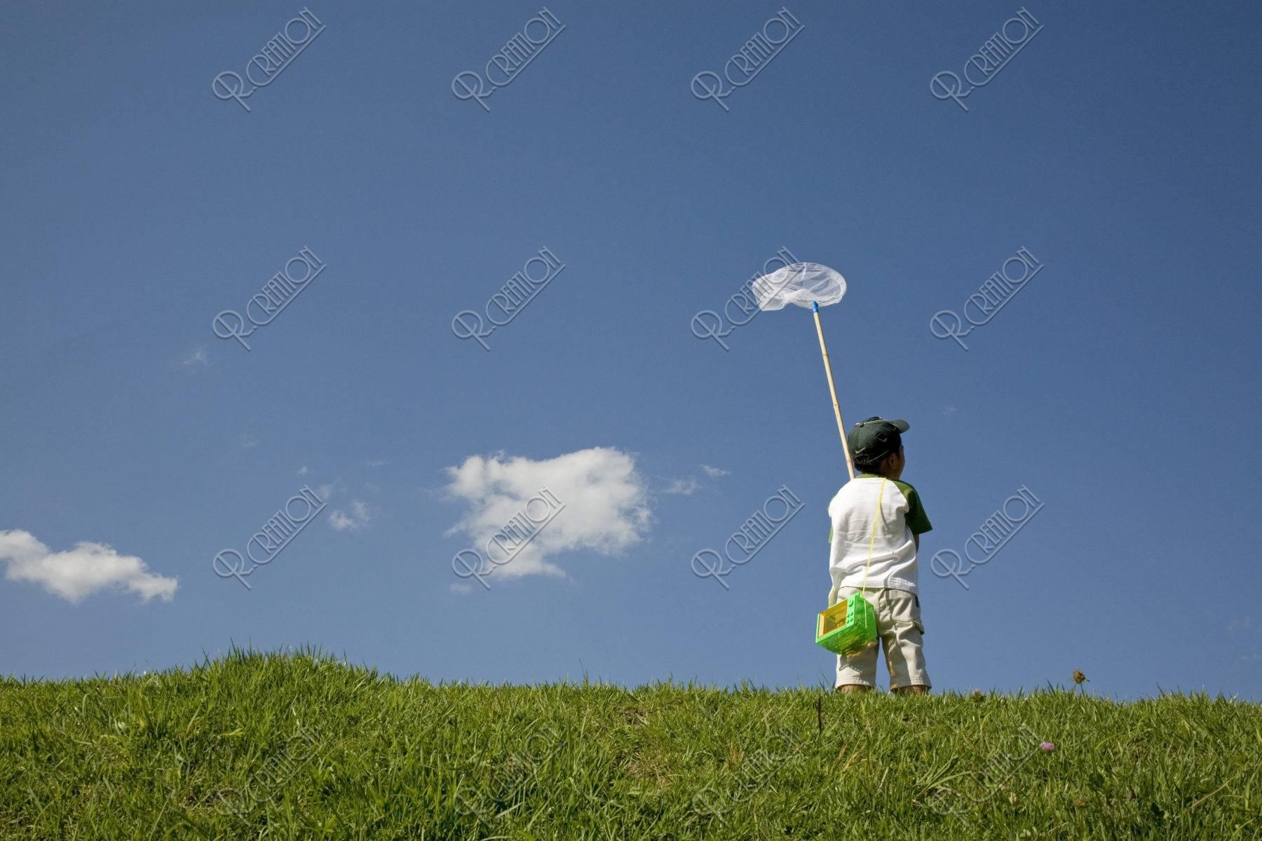 虫取り網を持つ後ろ姿の男の子