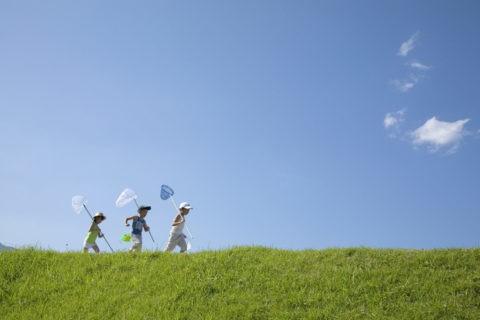 青空と虫取り網を持つ子供達