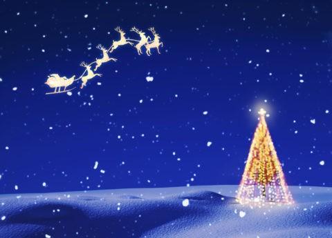 雪原とクリスマスツリーとトナカイ CG