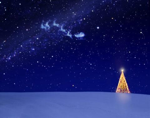 クリスマスツリーと星空とトナカイ CG