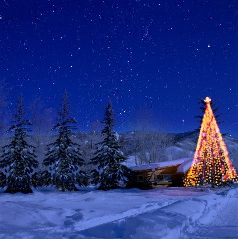 クリスマスツリーと家と星空 CG