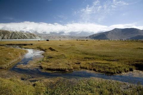 カラクリ湖に注ぐ小川と雪山