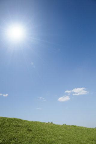 太陽と土手