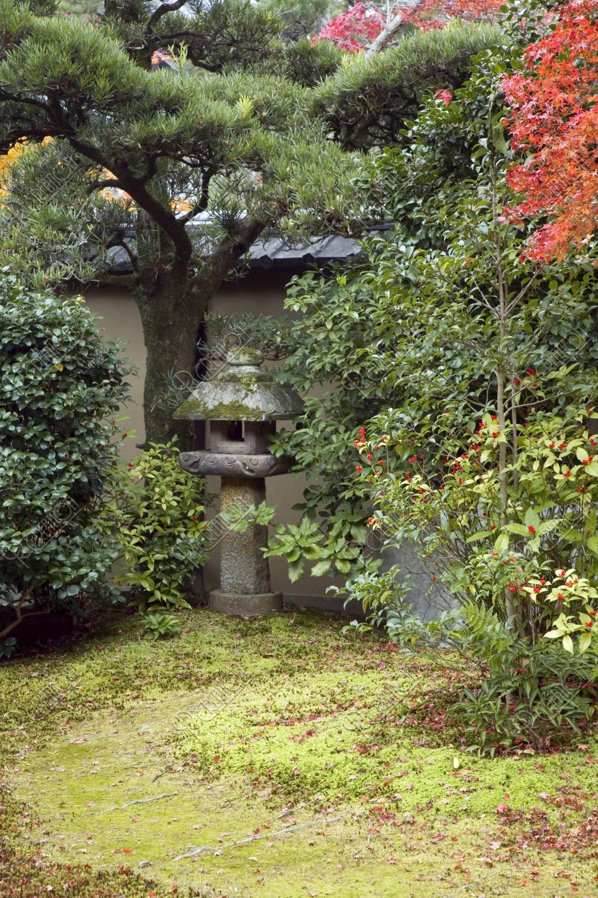 嵯峨釈迦堂の庭 千両と灯篭