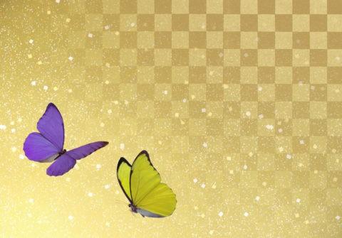 蝶々 和風イメージ CG