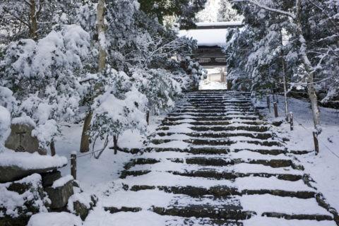 雪の常照皇寺参道