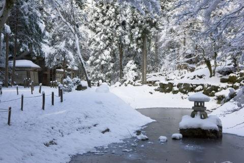 雪の常照皇寺境内