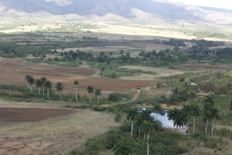ロス・インヘニオス盆地 世界遺産