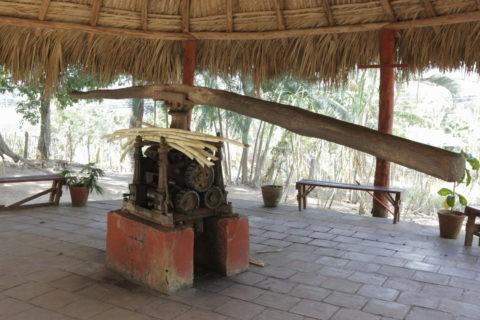 昔のサトウキビ搾り器