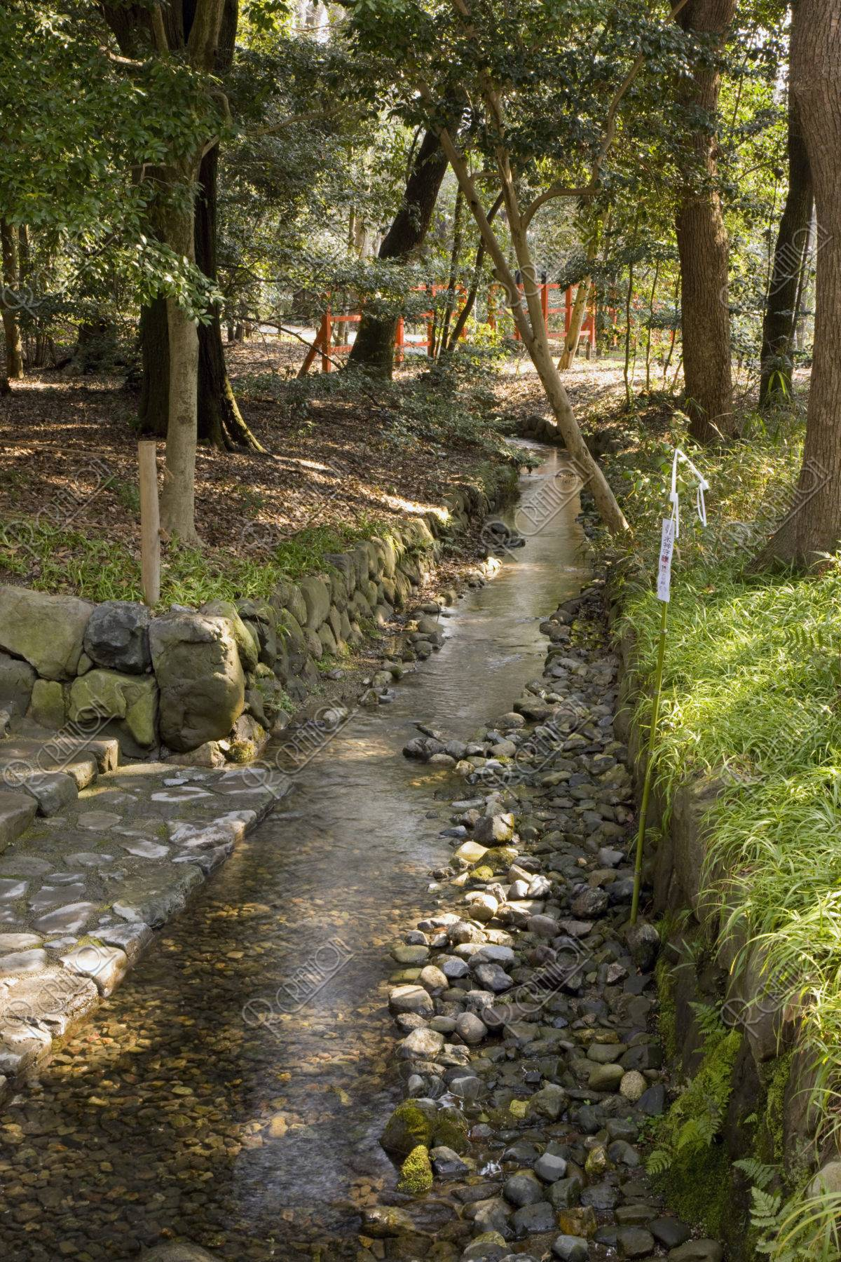 下鴨神社糺の森 御手洗川 世界遺産