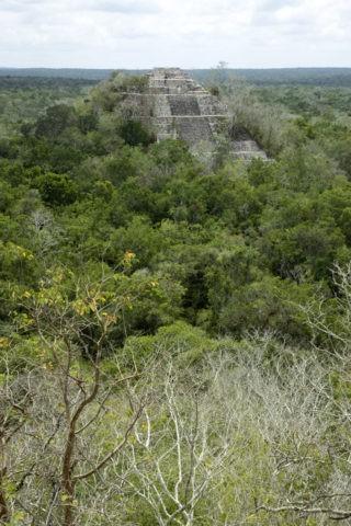 カラクムル遺跡 第2神殿から第1神殿 世界遺産