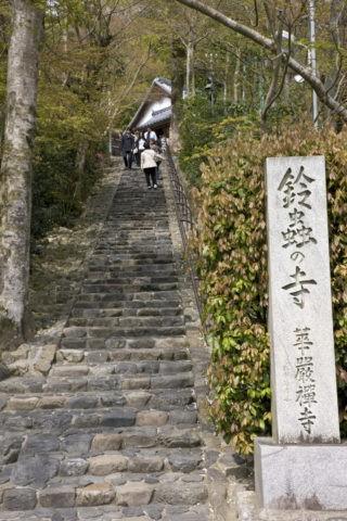 鈴虫寺 参道