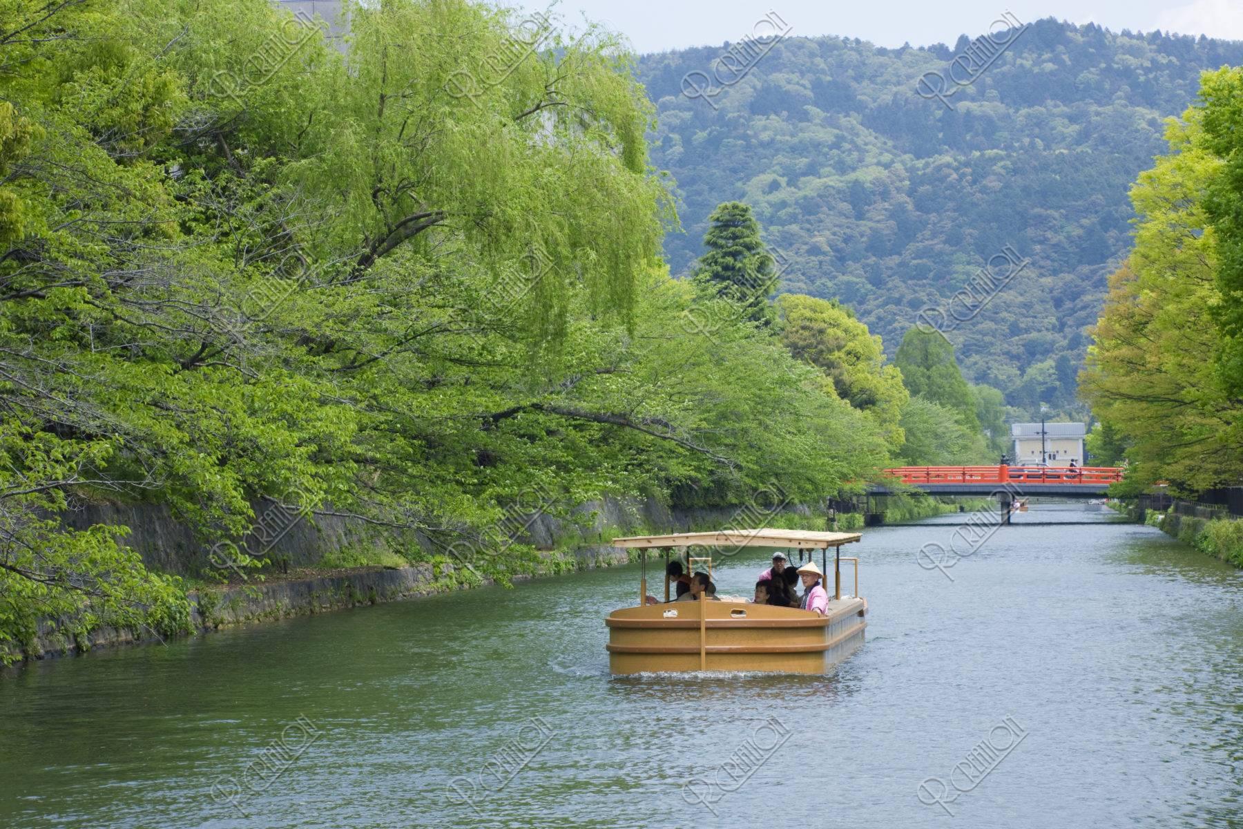 新緑の岡崎十石舟