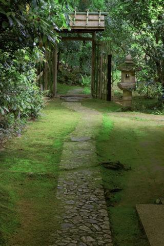 新緑の大河内山荘 露地
