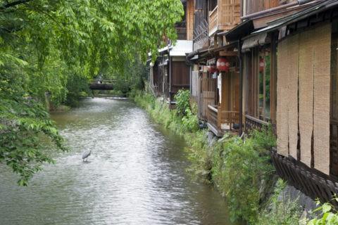 祇園 白川と家並み