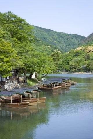 新緑の嵐山 屋形船