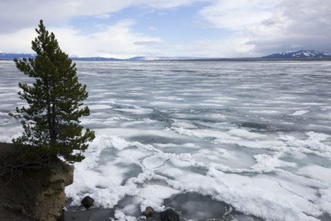 凍るイエローストーンレイク 世界遺産