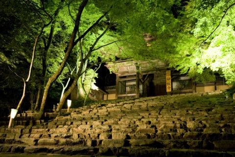 高雄神護寺山門のライトアップ