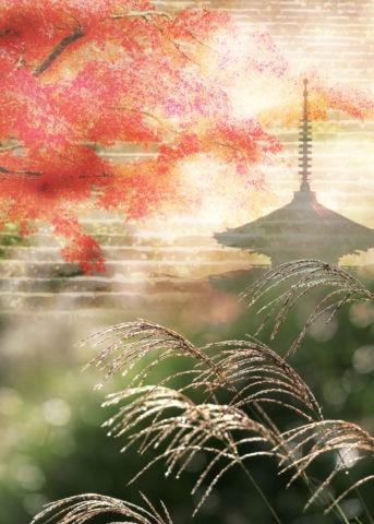 紅葉とススキと五重塔