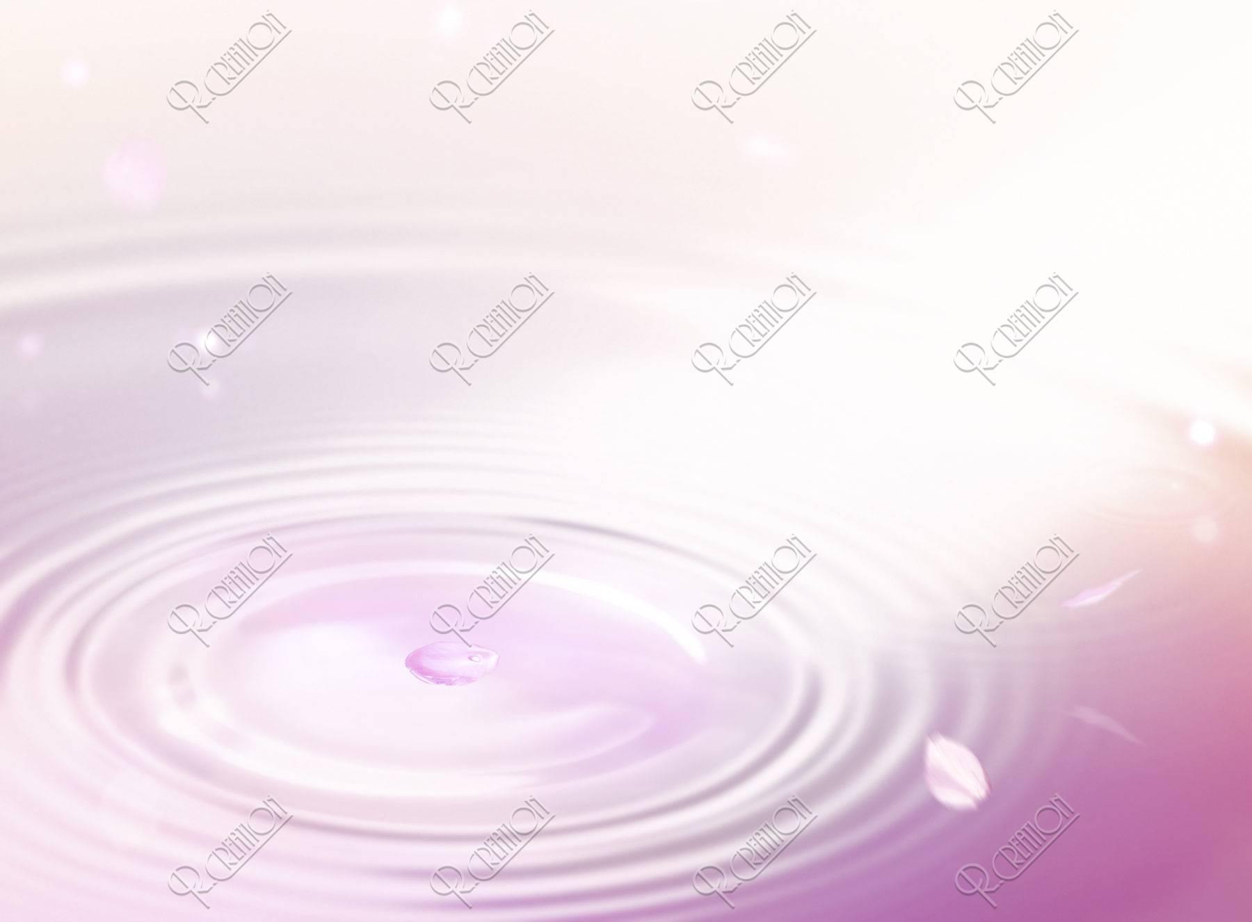 桜の花びらと波紋