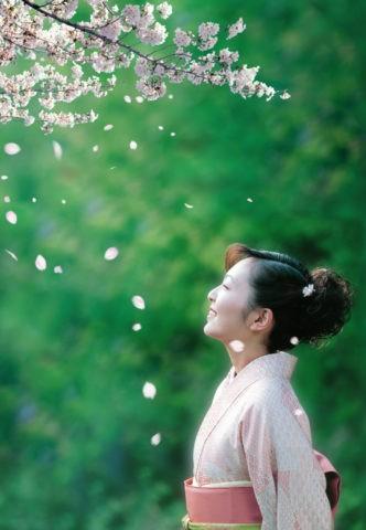 着物の女性と桜吹雪