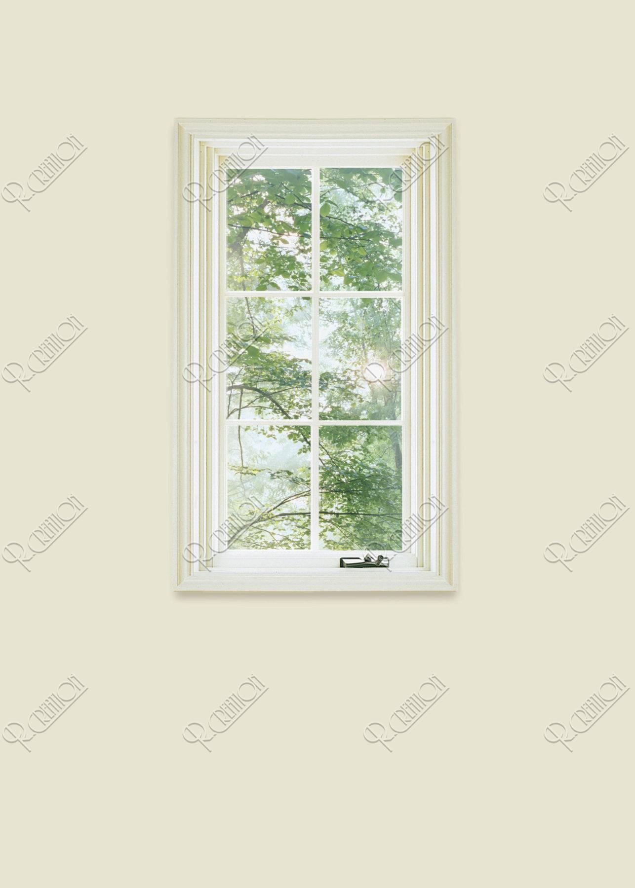 窓から見える木々